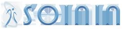 Soinin Logo